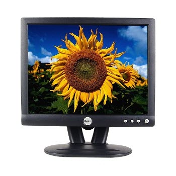 Dell E152FPg 15 inch LCD Monitor